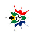 soccer ball on a south african emblem vector image vector image