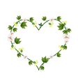 Yellow Cotton Flowers with Buds in Heart Shape vector image vector image