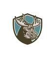 Angry Moose Mascot Shield vector image