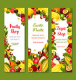 banners with exotic fresh tropical fruits vector image vector image
