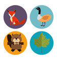canadian culture group of animals vector image vector image