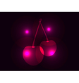 Cherries isolated on black background with highlig vector image vector image