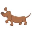 dachshund dog cartoon character vector image vector image