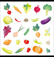 icons of fresh vegetables vector image