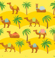 seamless camel pattern cute cartoon camels in vector image vector image