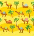seamless camel pattern cute cartoon camels vector image