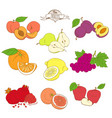 set mixed contour colorful fruits peach pear vector image