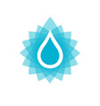 water drop icon or logo vector image vector image