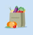 fresh vegetables in the paper bag vector image