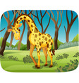 a giraffe in the forest vector image vector image