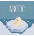 Arctic North Pole Retro styled image vector image vector image