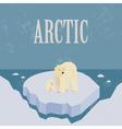 Arctic North Pole Retro styled image vector image
