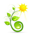 green plant and sun vector image vector image