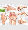 realistic hands set transparent vector image