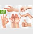 realistic hands set transparent vector image vector image