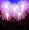 background with salute Bright color fireworks vector image