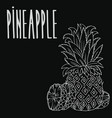 chalkboard ripe ananas fruit vector image