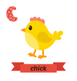 Chick C letter Cute children animal alphabet in vector image