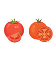 collection of fresh red tomatoes and soup vector image