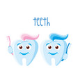 teeth on white background vector image vector image