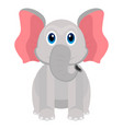 isolated cute elephant vector image