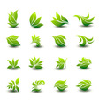 a great set of icons of stylized green leaves vector image