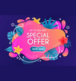 beautiful summer special offer background vector image vector image