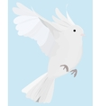 dove on fly vector image vector image