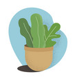 flat house plant pot colorful vector image