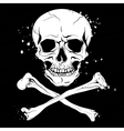 Pirate black flag with skull and crossbones vector image vector image