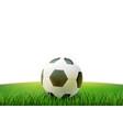 realistic footbal soccer ball stadium grass vector image vector image