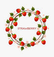 strawberry round summer fruits card vector image vector image