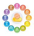 vitamins icons rainbow color glossy balls logo vector image
