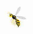 wasp insect isolated on white vector image vector image