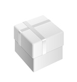 white blank Package Box vector image vector image