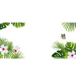 banner tropical plants and butterfly vector image vector image