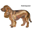 colored decorative standing portrait of dog field vector image vector image