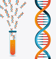 DNA design vector image