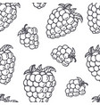 outline seamless pattern with blackberry vector image vector image