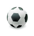 realistic football soccer ball vector image vector image