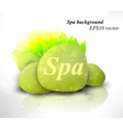Spa background vector image