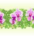 tropical border seamless background bouquet vector image