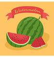 Watermelon Banner Orange2 vector image