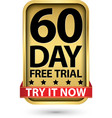 60 day free trial try it now golden label vector image vector image
