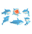 blue shark in different poses set ocean scary vector image