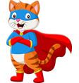 cartoon superhero cat with eyes mask vector image vector image