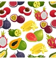 Exotic fresh fruits pattern vector image vector image