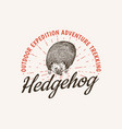 hedgehog badge spiny forest wild animal label or vector image vector image