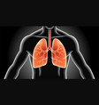 lung x-ray vector image