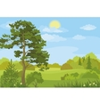 Summer landscape with trees and sky vector image vector image